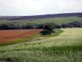Все поля в Малоархангельском районе засеяны.