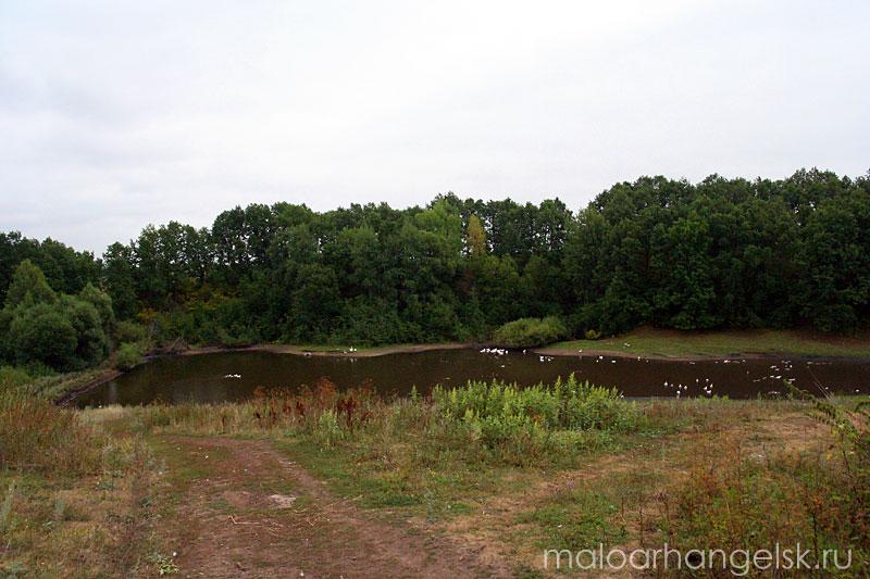 Общий вид пруда близ Луковца
