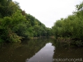 Река Сосна в районе Луковца