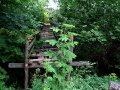 Старый деревянный переход над оврагом