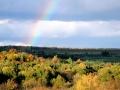 Над Легостаево всыхнула радуга.