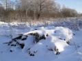 Дровишки, что под снегом, из леса вестимо.