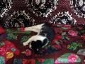 Из лоскутков получается нарядный коврик.