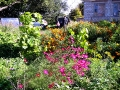 Прихожане живут в доме паломника, сажают цветы, огородик.
