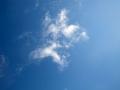 На небе трепетали белые крылья.