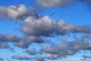 Осень. Небо над Малоархангельском