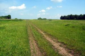 Дорога к усадьбе Мейеров