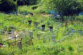 Кладбище села Трубицино