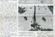 Газета «Звезда», 13 июня 1987 года.