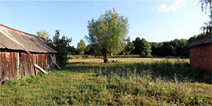 Деревня Мишково. Нажмите на изображение, чтобы перейти к осмотру (откроется в новом окне).