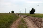 Большая птица — канюк обыкновенный (сарыч) — на дороге к Коротеево.