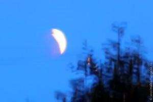 Первое лунное затмение 2011 года.