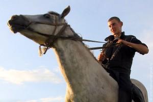 Лошадь.