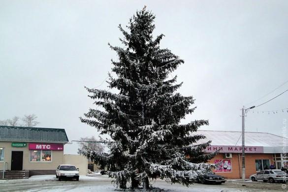 Новогодняя Ёлка 2012 года в Малоархангельске.