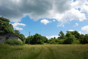 Дорога в деревне Акинтьево Малоархангельского района Орловской области.