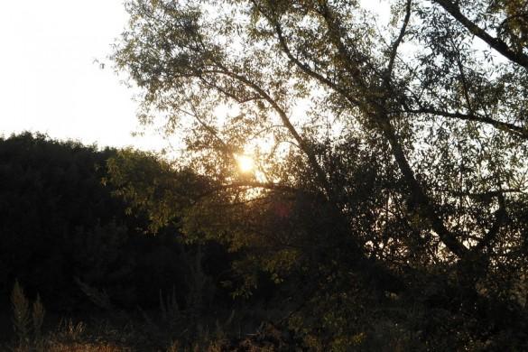 Закат в Афанасовке.