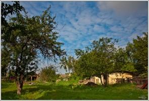 Деревня Каменка Малоархангелького района глазами mimicria.