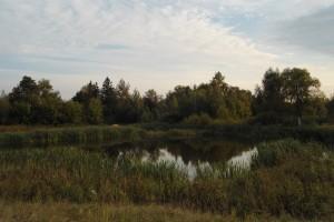 Странное озеро.