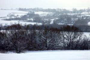 Вид на деревню Вторая Ивань с Первой Ивани в январе 2013 года.