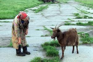 Раиса Григорьевна Легостаева и коза.
