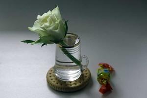 От сердца и почек дарю вам цветочек!