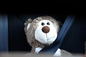 Медведь в детском автомобильном кресле.