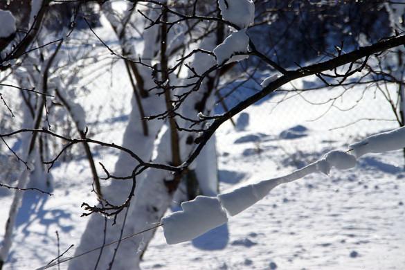 Февральский снег.