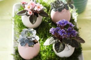 vasen-blumen-ostereier-eierschalen