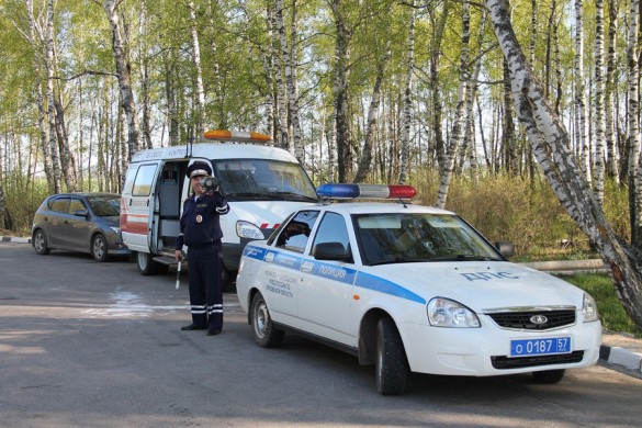 На передвижном посту весового контроля №1 в Малоархангельском районе.