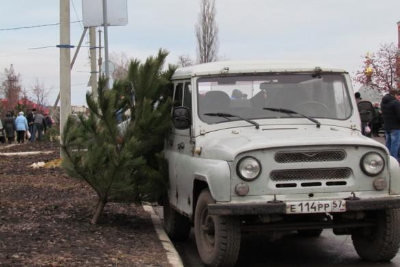 Предновогодняя ярмарка — 2015. Новогодняя сосна.