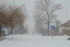 Последний день зимы 2018 года.