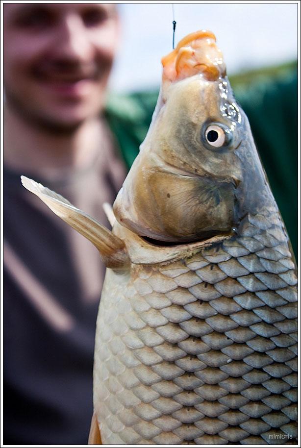 Удачной рыбалки!?