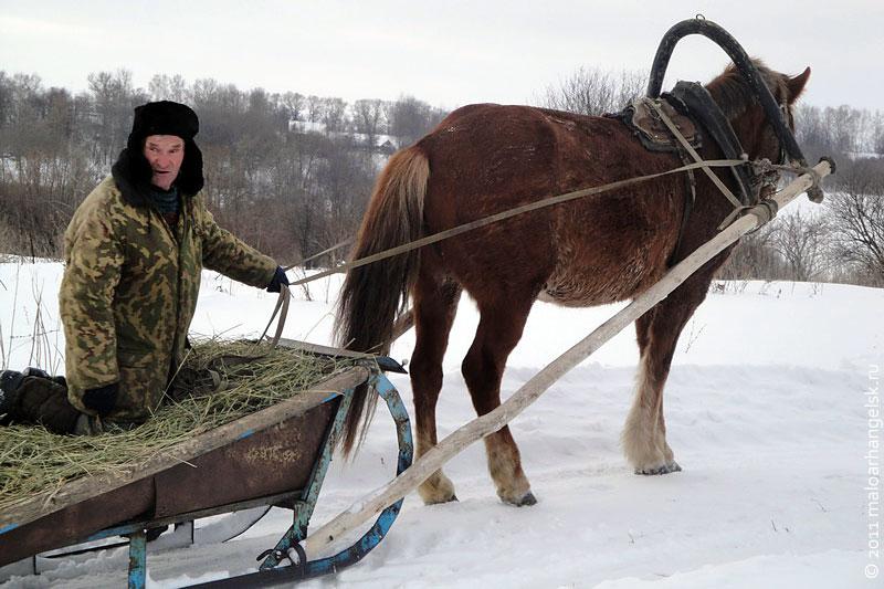 Самый лучший вид транспорта в зимнее время.
