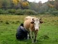 В Легостаево не только женщины умеют доить коров, но и мужчины.