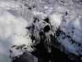 И зимой и летом приходят к колодцу приходят воды напиться...