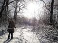 Прогулка по зимнему лесу.