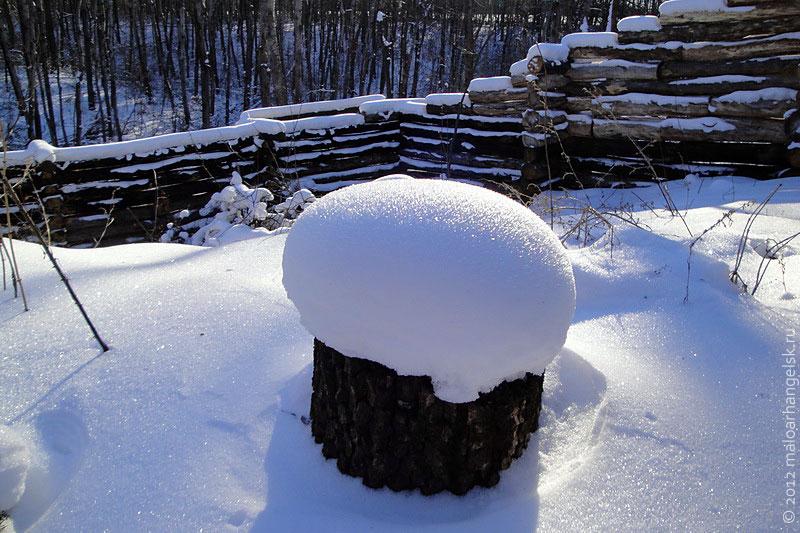 Пенёк под шапкой снега похож на грибок.