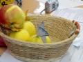 Жеребьёвка проходила с помощью этих яблочек.