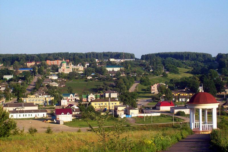 Вид на Покровское с западной стороны, на дальнем плане Покровская церковь.
