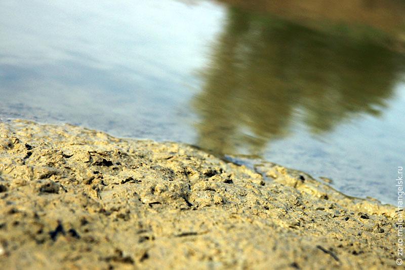 На дне карьера вода не высохла до сих пор несмотря на жару.