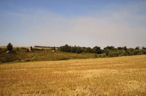 Деревня Сидоровка Малоархангельского района Орловской области