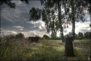 Малоархангельский пейзаж. Сентябрь 2009 года.