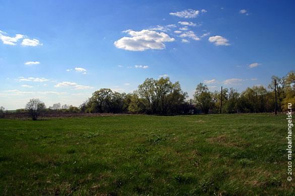 Дом находится в 10 метрах от реки Сосна, окружён со всех сторон деревьями