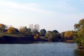 Этому пруду в селе Дросково свыше 100 лет