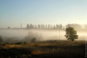 Сентябрь 2010 года. Пруд Беленький. Туман.