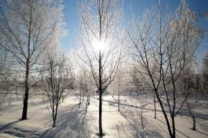 Рождество 2011 года в Малоархангельске.