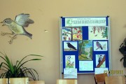 «День Птиц» в Совхозской средней школе.