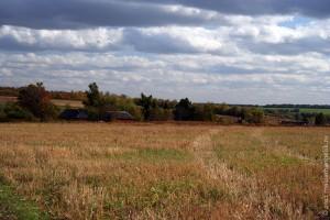 Дорога к Петровке: слева на снимке деревня Сидоровка.