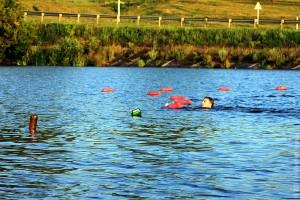 Новый Беленький: плывущий к буйкам.