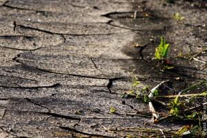 Земля после засухи.